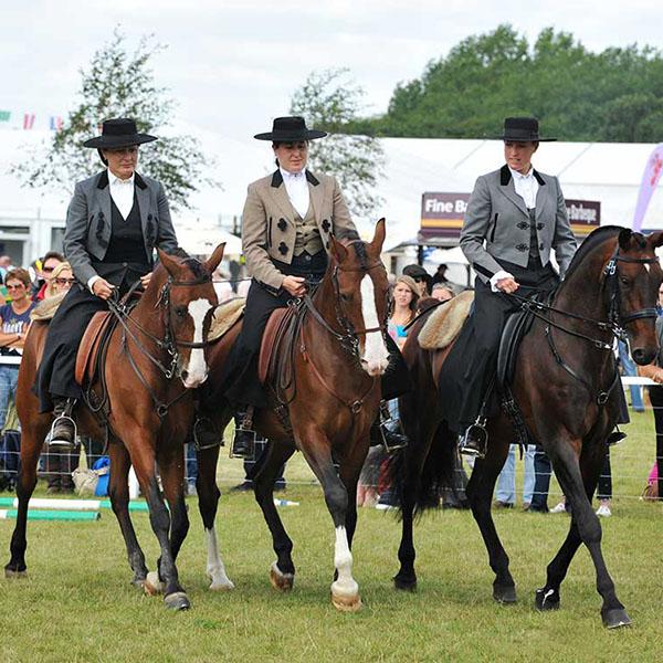 Equestrian-Alltech-FEI-WEG-Euro_Ch09kh2269