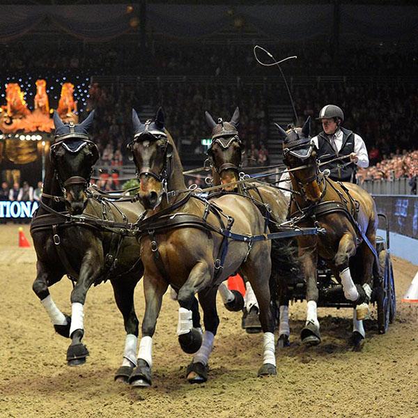 Equestrian-Olympia_13kh_13kh_1939