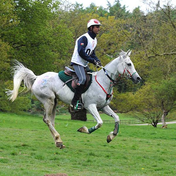 Equestrian-RWE-Al-Balushi-_RWHS13kh1251
